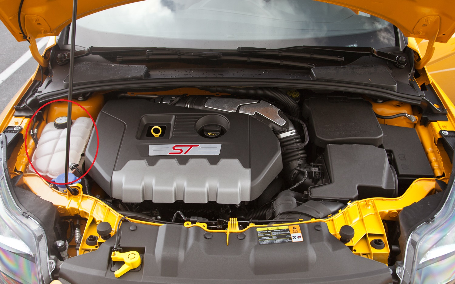 Ford Focus Coolant British Automotive Engine Can We Get An Aluminum Overflow Tank Maybe In Anodized 2003