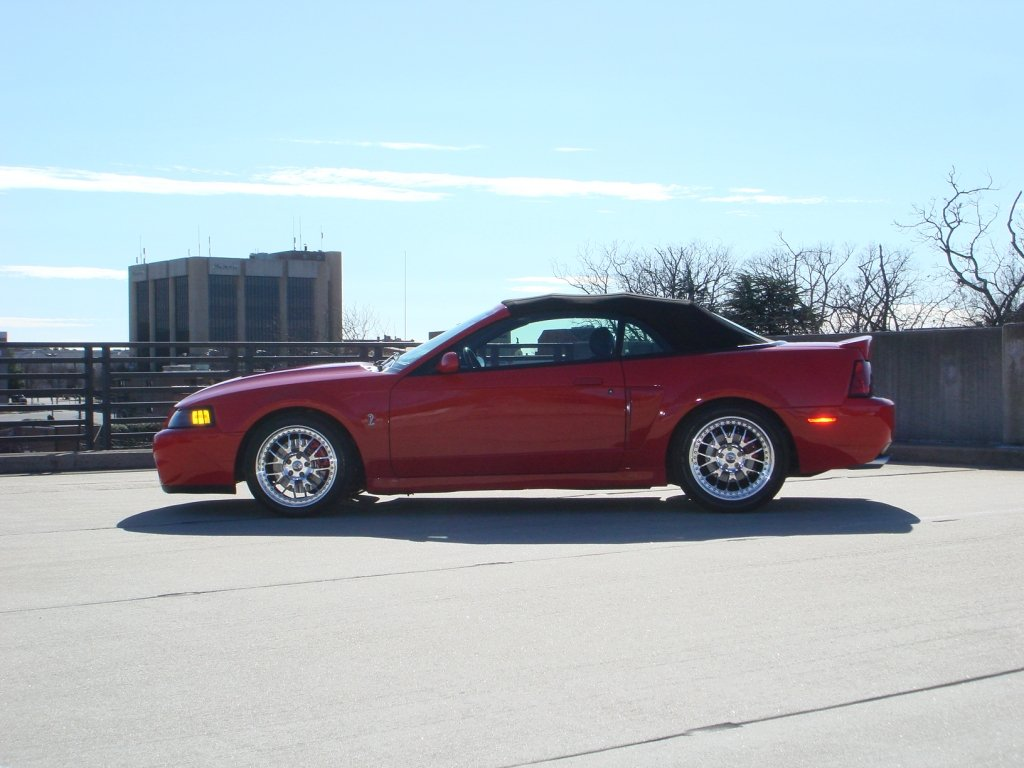Showcase cover image for FOURCED's 2003 FORD MUSTANG